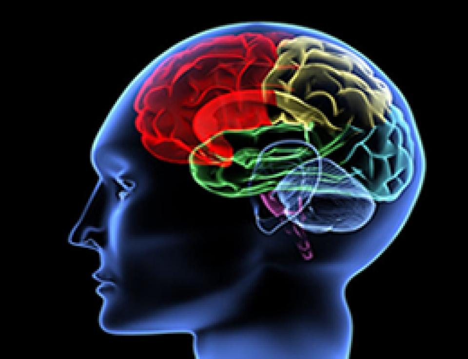 Cirurgia neurológica