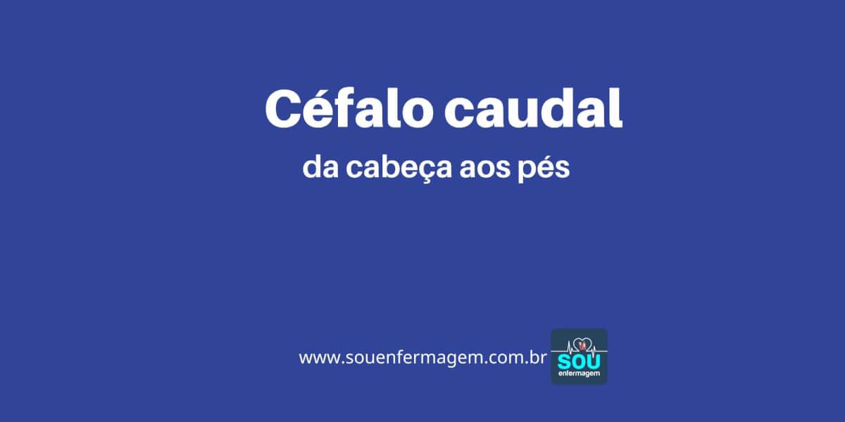 Céfalo Caudal