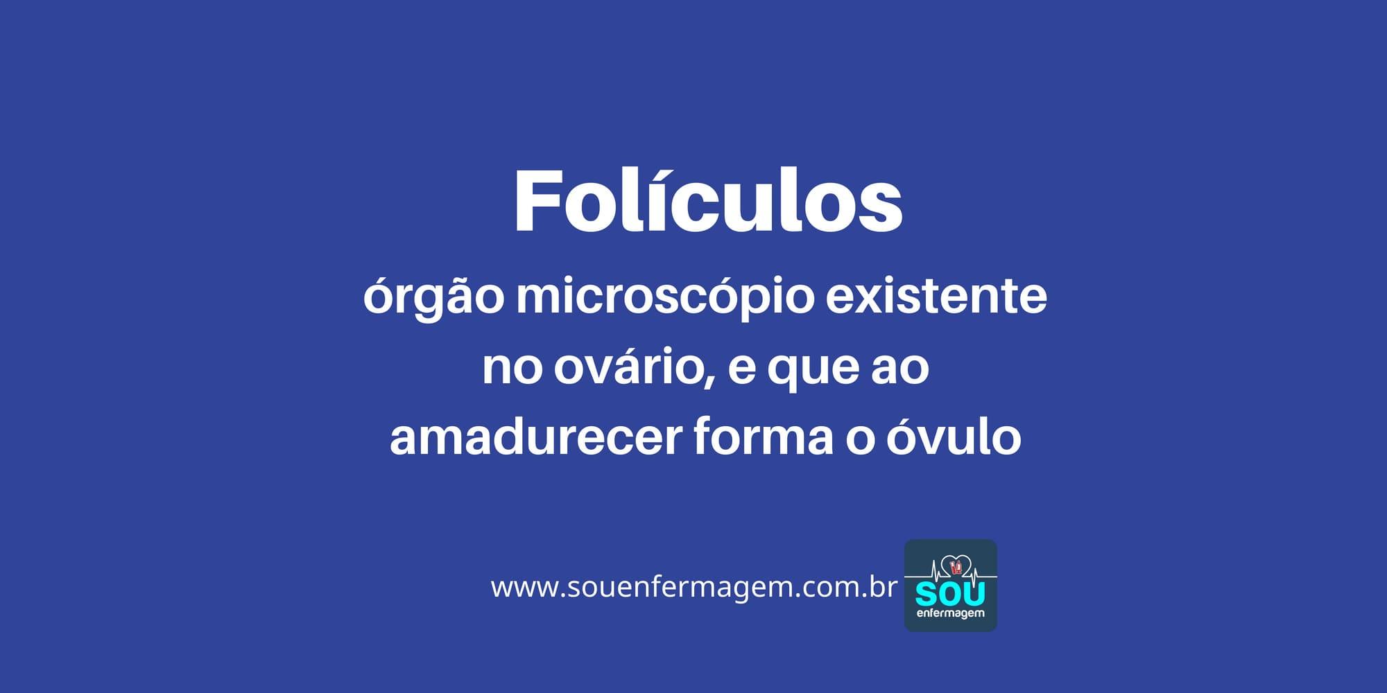 Folículos.jpg