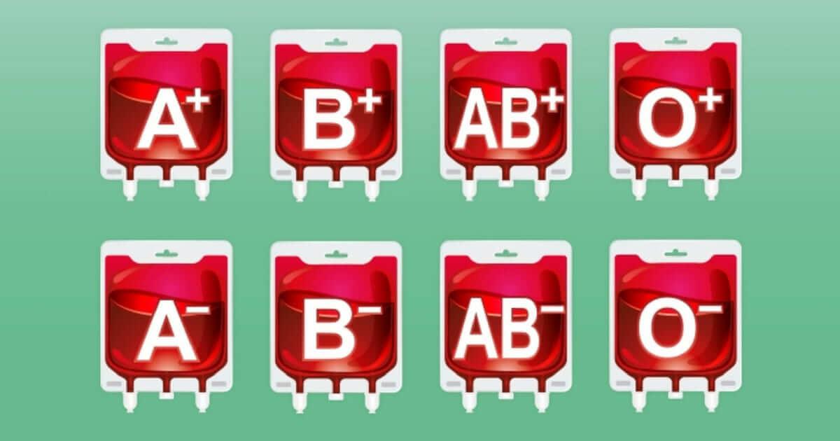 As bactérias do intestino podem nos ajudar a obter um tipo sanguíneo universal?