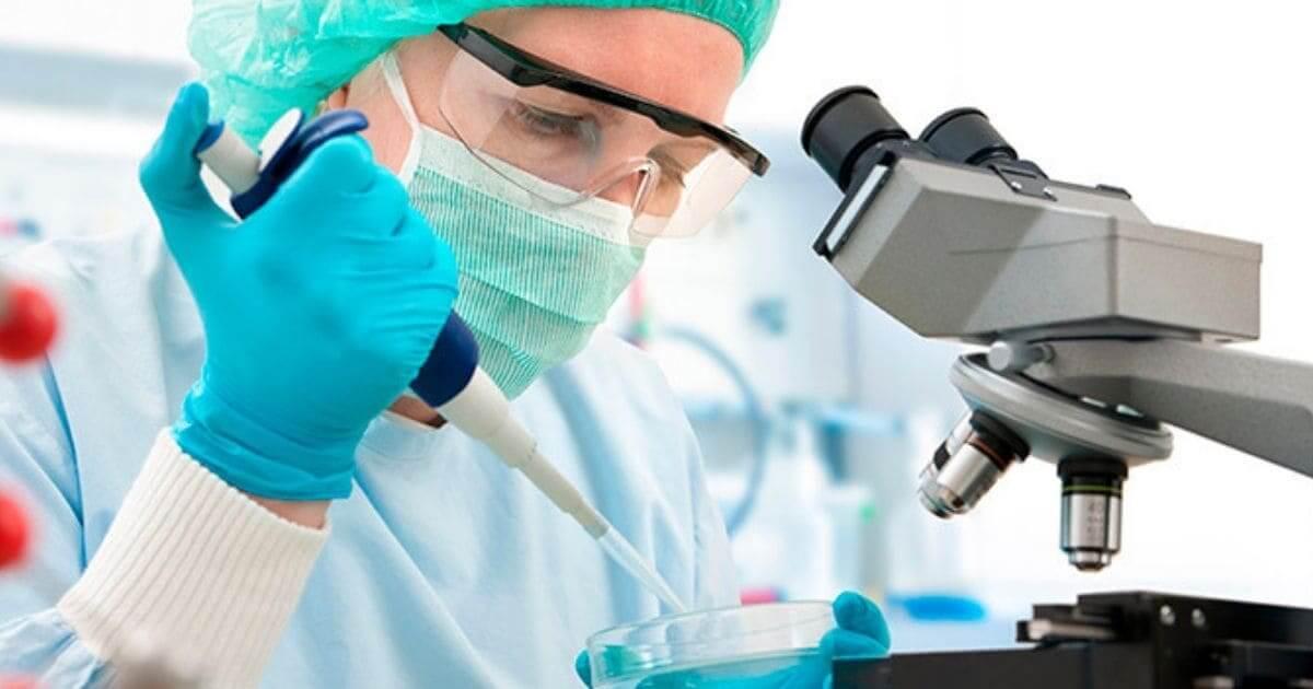 Medicamentos genéricos possuem mesma qualidade que referentes