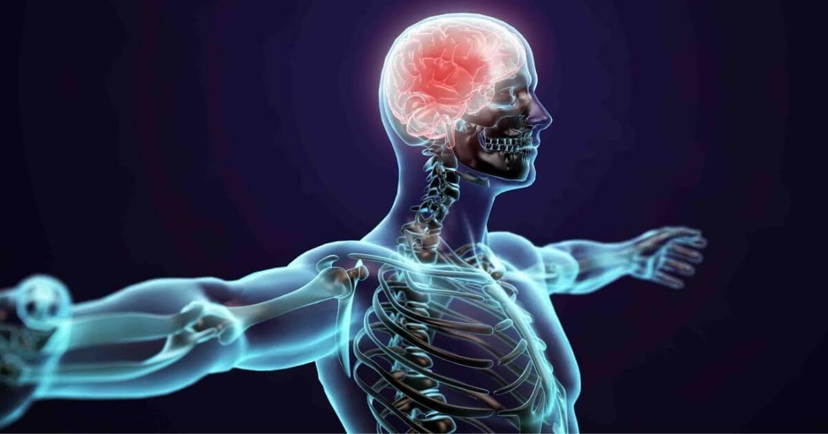 Quais são os estágios da esclerose múltipla?
